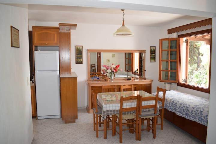 Appartment in Votsi, Alonissos - Votsi