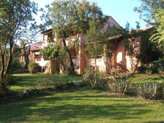 un oasi nel verde  - Zonza - Huis