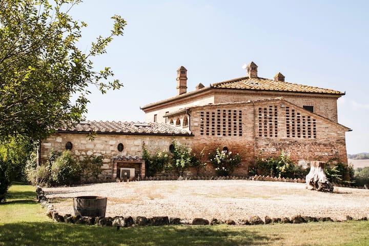 Podere Collarcole - Asciano (near Montalcino)