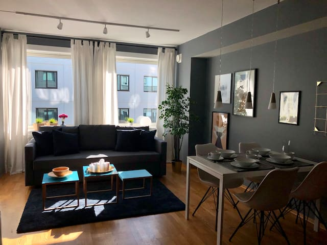 Central apartment at Vika/Frogner