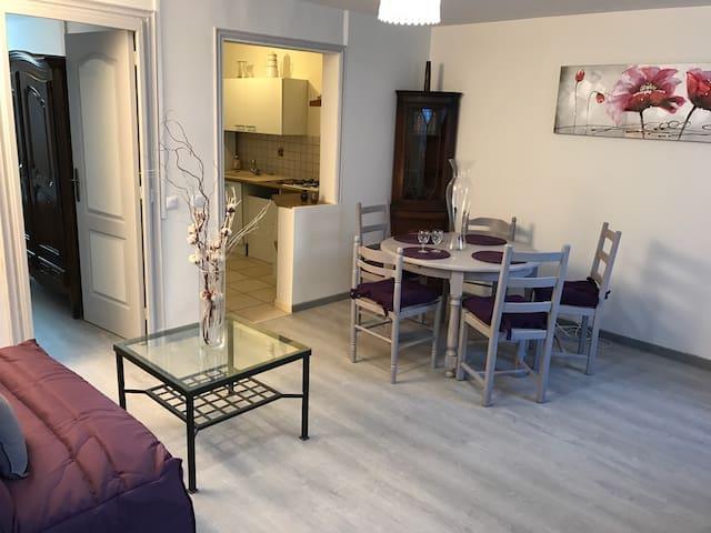 Joli 2 pièces avec jardin parking - La Roche-Guyon - Appartement