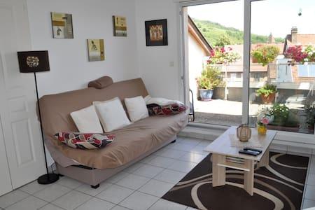 Magnifique appartement, vue sur les montagnes ! - Flat