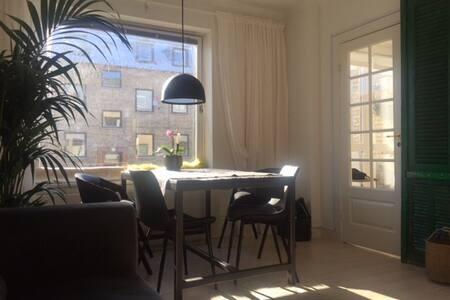Cozy park city apartment!
