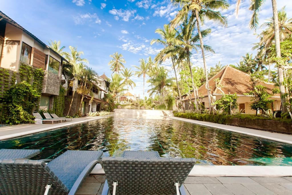 giant 50 m long swimming pool
