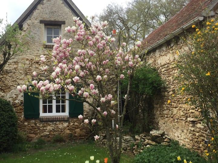"""""""Florette"""": A charming cottage & a romantic garden"""