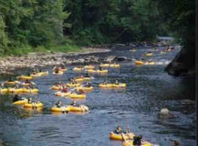 Tube down the Rainbow River with free shuttle service back to your car!  Pack a picnic lunch!