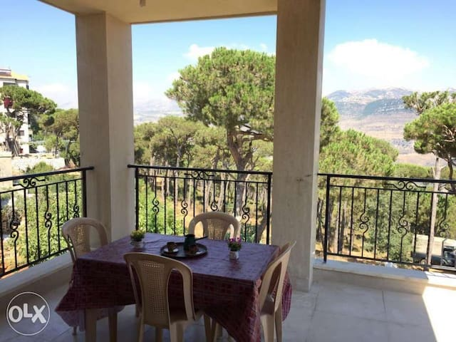 Bright and spacious Apt in Bkassine Jezzine