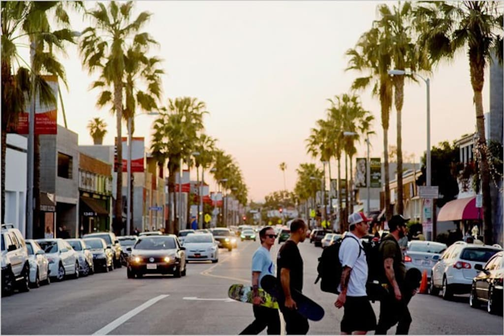 Great shopping and resturants / bars off Abbot Kinney, less than a min walk away