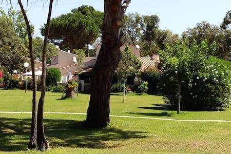 Mini villa proche plage et Port de plaisance - Santa-Maria-Poggio