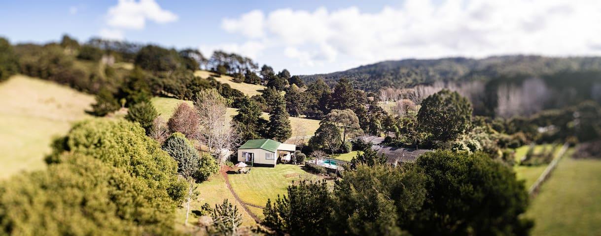 100 Bethells Road Cottage - Auckland - Kulübe