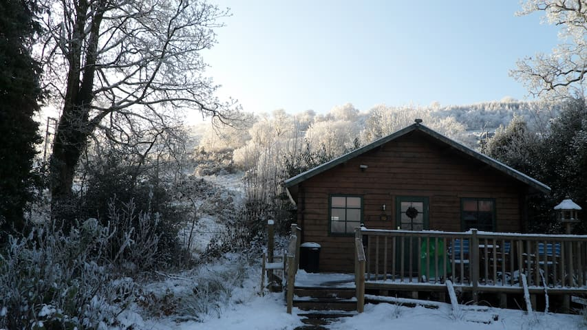 A real log cabin, secluded, & the perfect getaway. - Helensburgh - Blockhütte