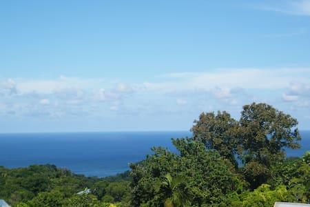 Blue Room@Sea View Apartment - Port Antonio