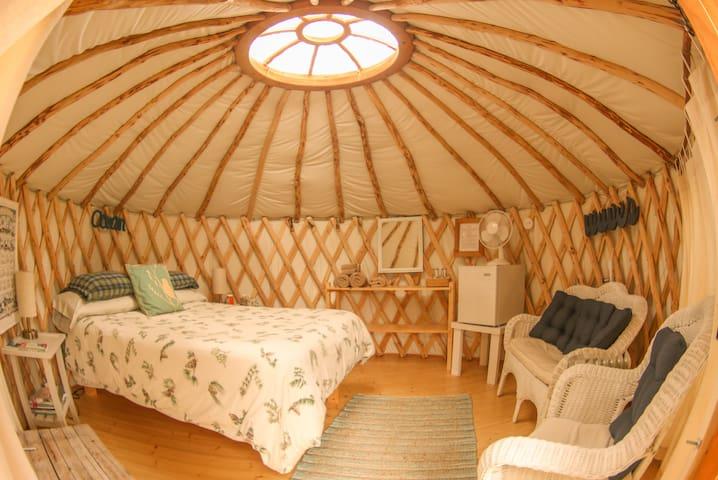 Inside view of the Osprey Yurt