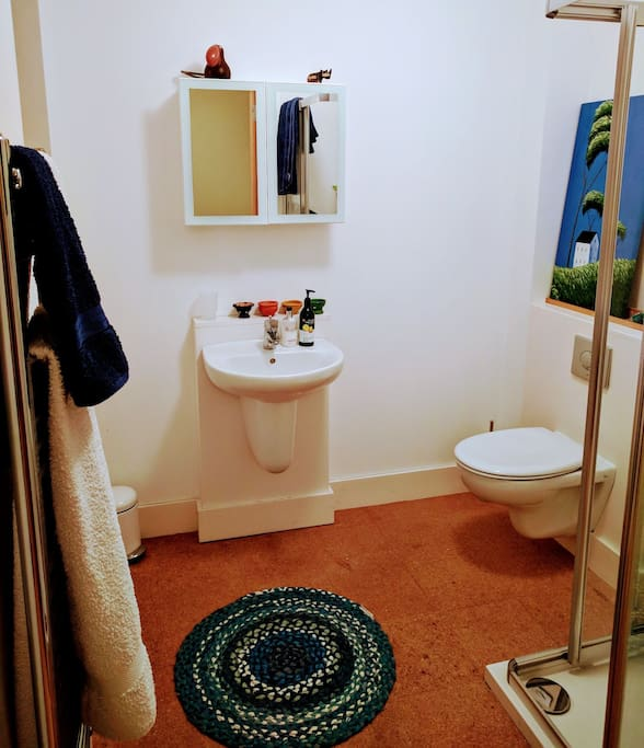Private ensuite bathroom with organic toiletries