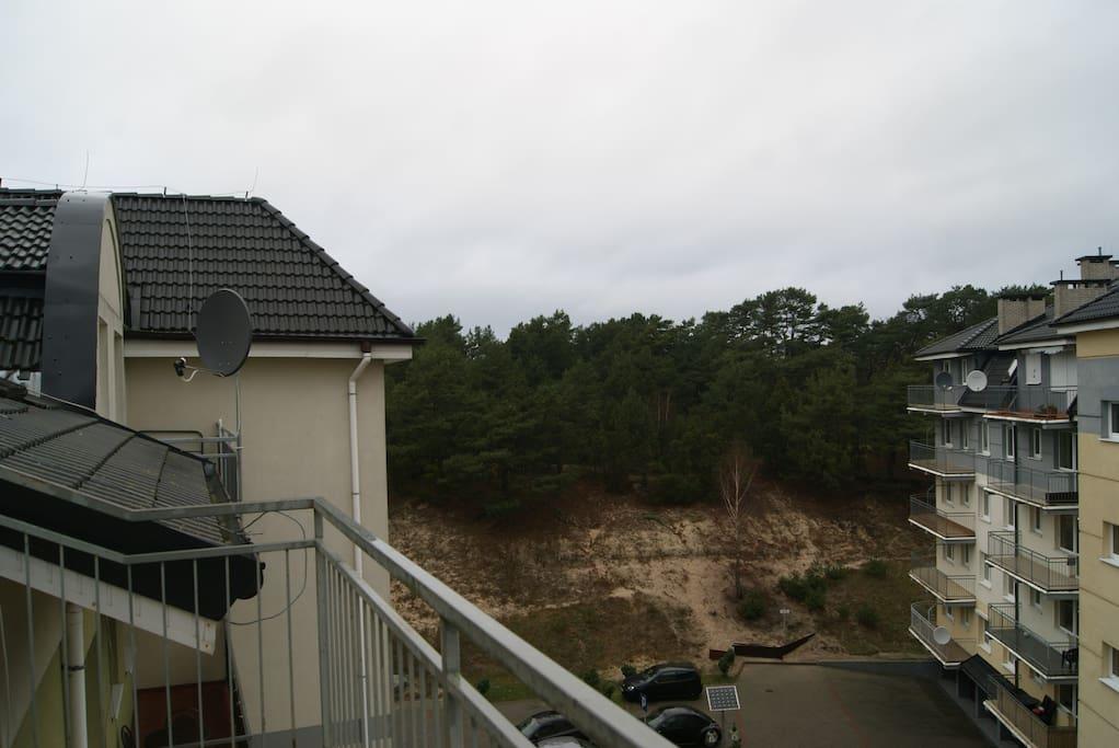 Widok z balkonu na wydmę i las sosnowy.