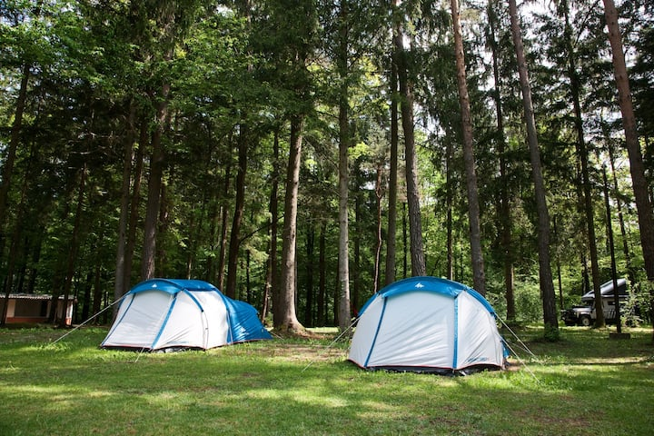 Rental tent II. / Forest Camping Mozirje