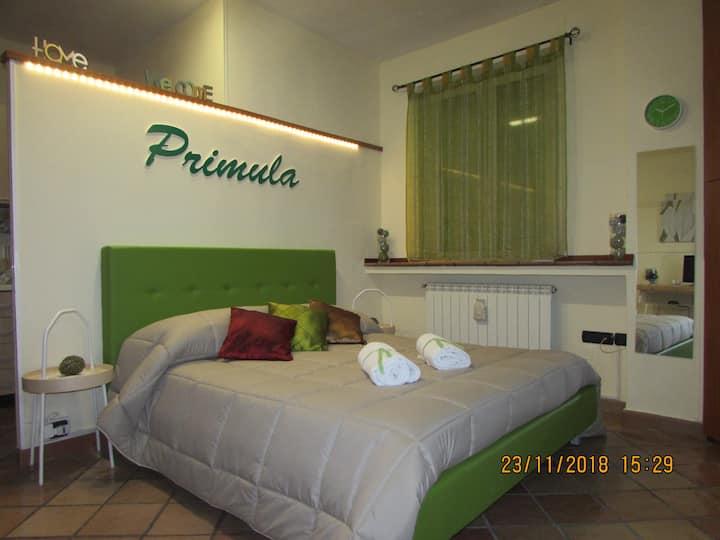 Casa Vacanza SMCV - Primula