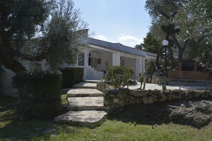 Villa degli Ulivi con 1.200 mq di giardino