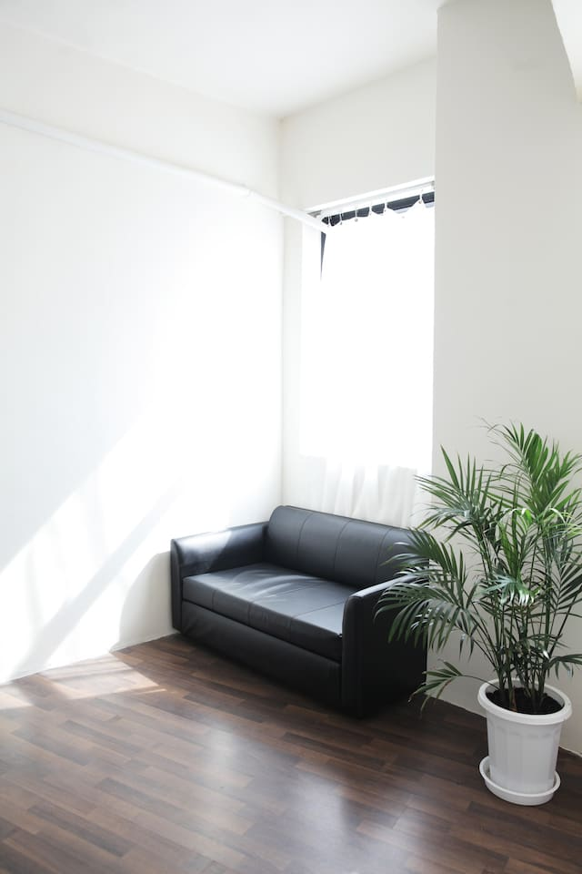 comfy sofa bed