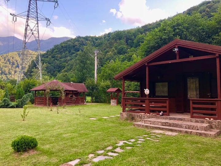 Retreat Chalet in Retezat Mountains