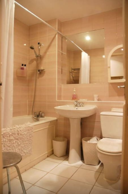 guest bathroom (not ensuite but exclusively for guest)