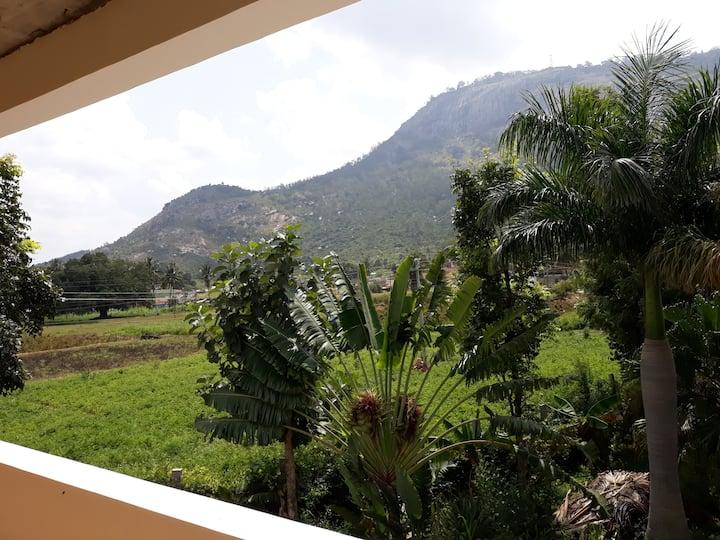 Nandi Foothills Farmstay