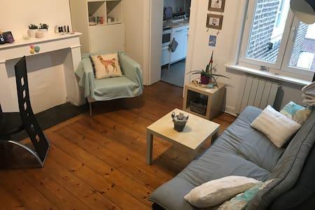 Appartement Lille - Lille - Wohnung