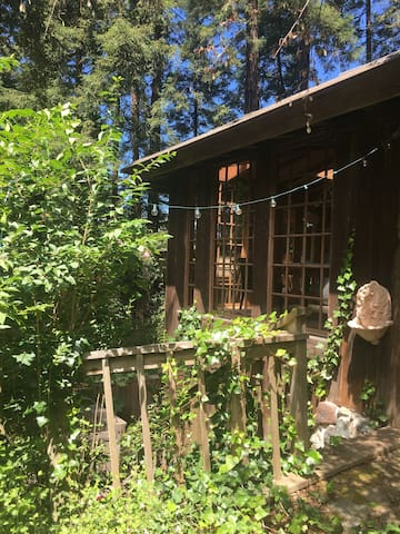 """Tree House"" Getaway - Mill Valley - Dom"