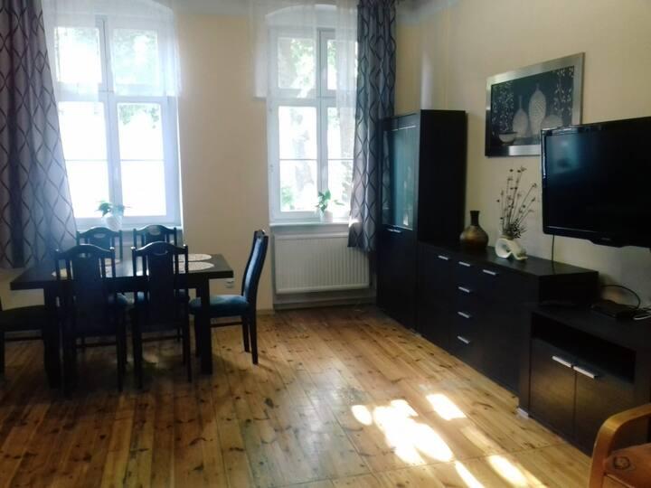 Spacious, cozy apartment in the center