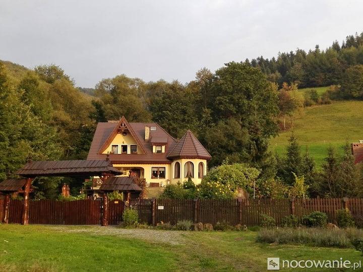 Luxury Mountain House Near River
