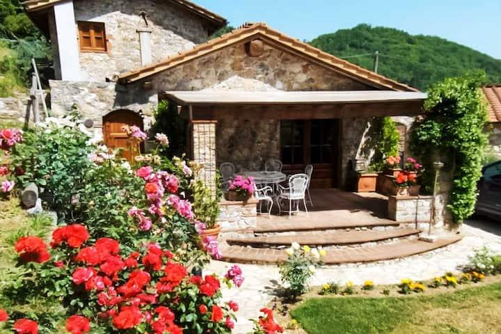 Villa Armonia - holiday home with flair - Tuscany