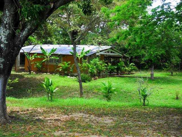 B&B -4 - Girardot - Bed & Breakfast