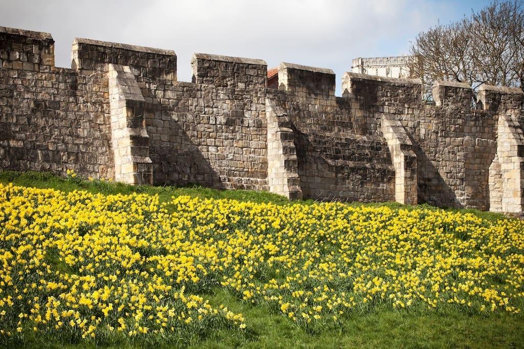 Follow the walls round York