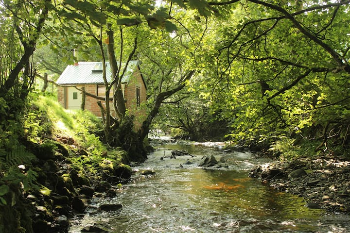 Hafod Hedd (Peaceful Summer Dwelling)