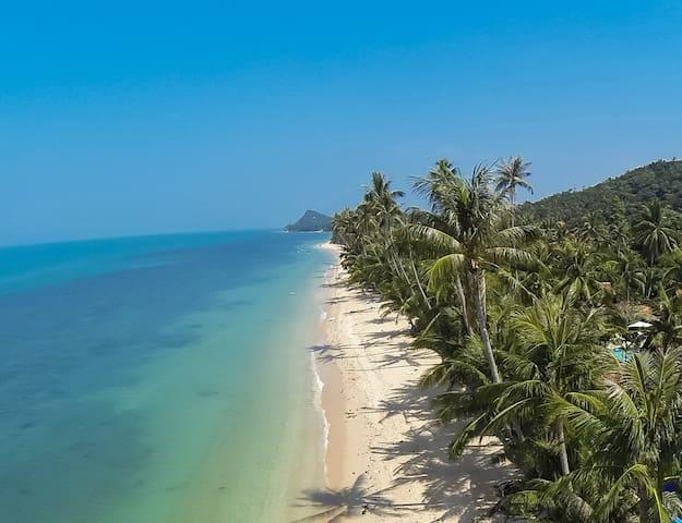 Luxury Villa w Private Pool at 20 meters to Beach - เกาะสมุย - วิลล่า