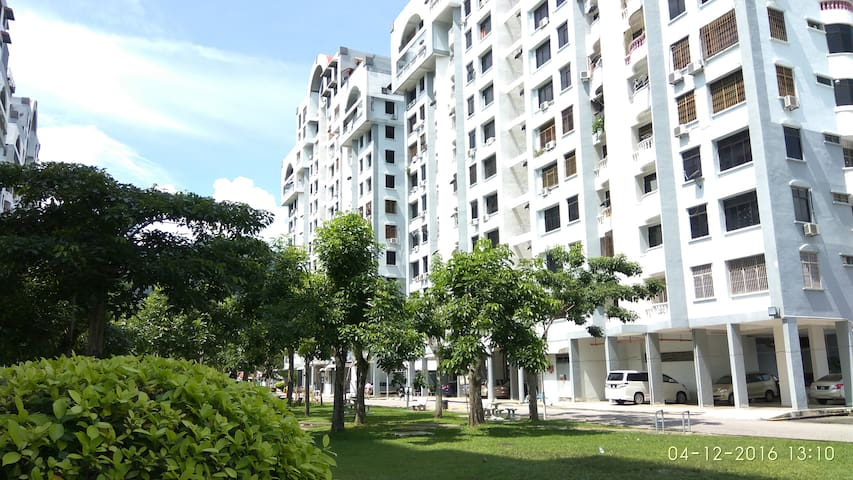 just renovated, close to USM, airport, bus station