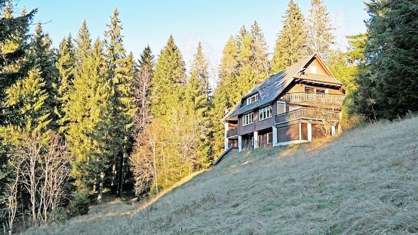 Ferienwohnung ,, Schwarzwaldherz '' für 8 Personen - Feldberg (Schwarzwald) - Selveierleilighet