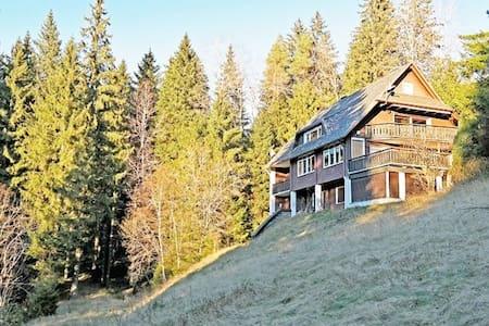 Ferienwohnung ,, Schwarzwaldherz '' für 8 Personen - Feldberg (Schwarzwald) - Osakehuoneisto