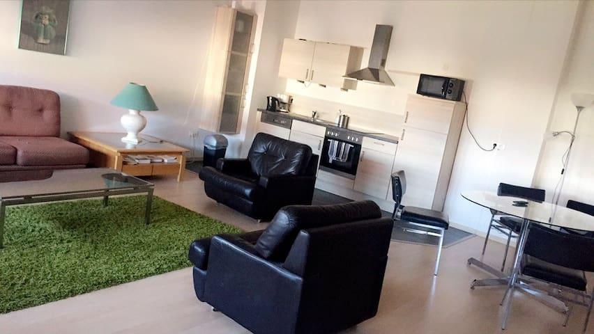 Bel appartement Volgelsheim G