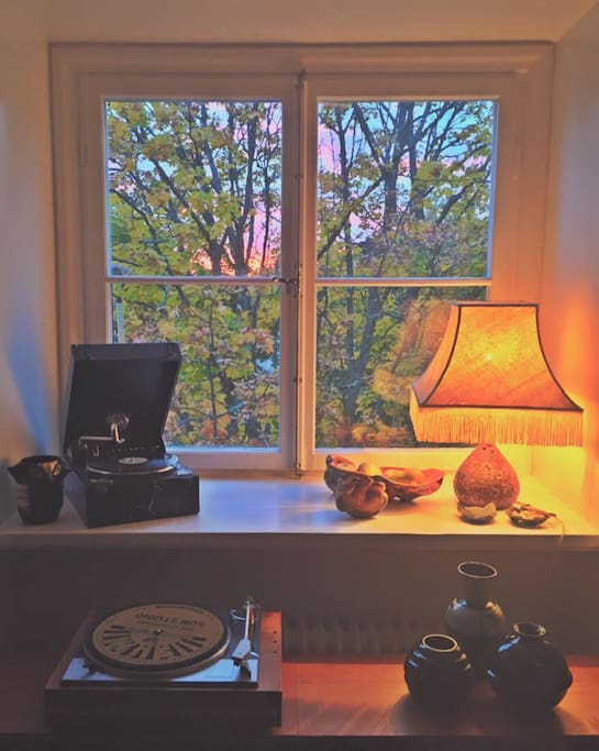 Fönster mot bakgården i vardagsrummet. Living room window.