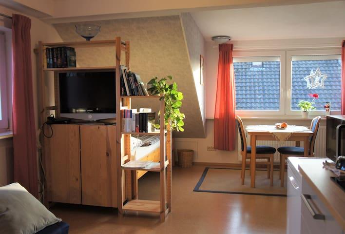 Helle gemütliche 1 Zi.- Wohnung, mit kleiner Küche