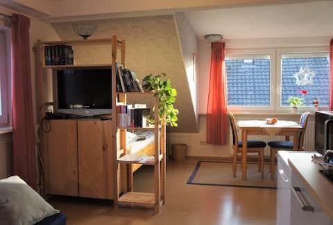 Svetlo útulný 1 izbový byt, s malou kuchyňou