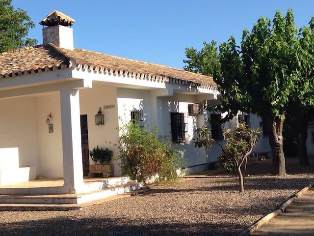 Chalet con piscina ideal familias - Aznalcázar - Villa