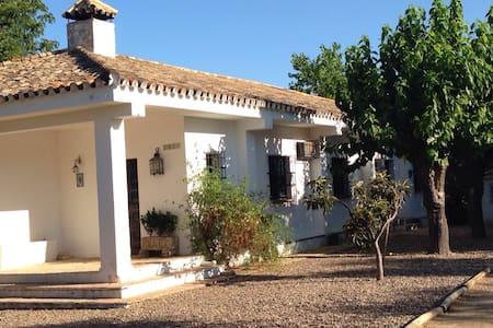 Chalet con piscina ideal familias - Aznalcázar - Willa