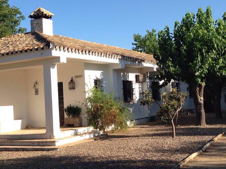 Casa rural La hormiga