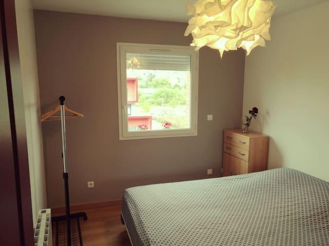 Chambre lit double proche CHU et fac de médecine.
