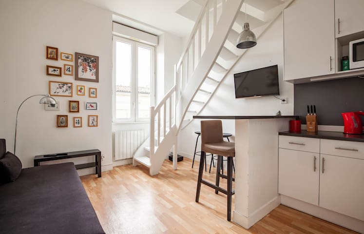 Charming duplex for 4 close to Place Gambetta
