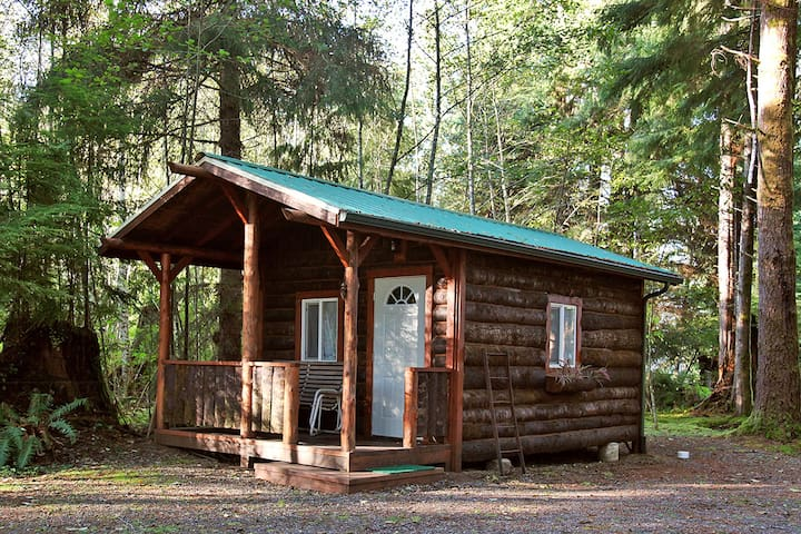 Trappers Cabin - Forks - Cabin
