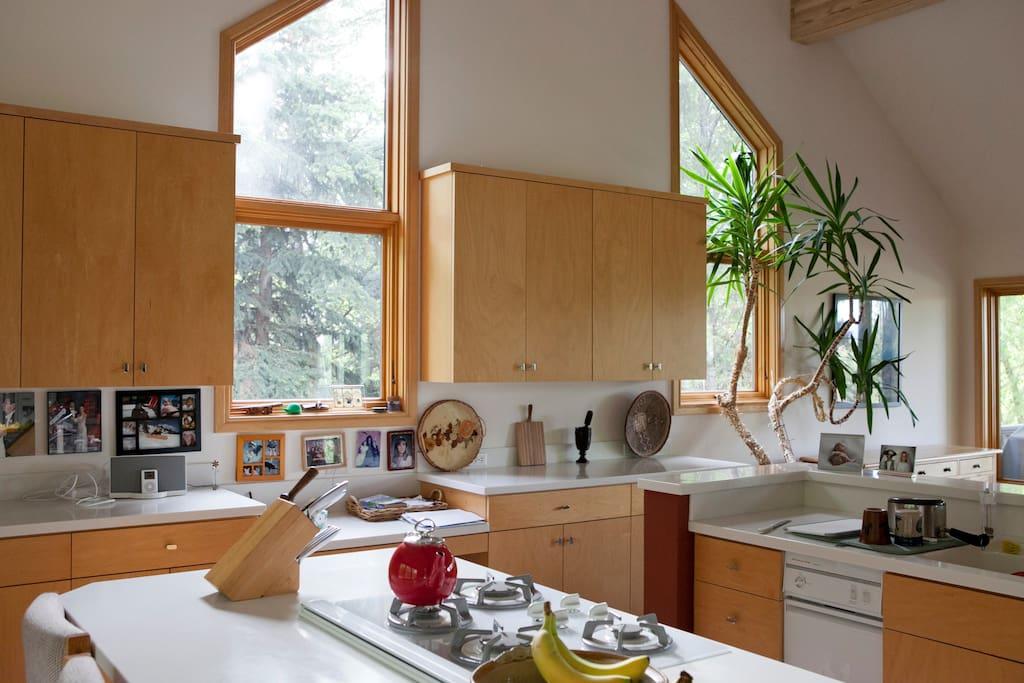 Large, spacious kitchen