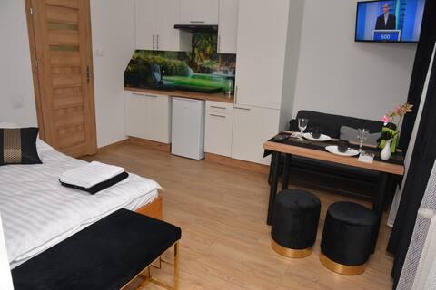 Apartament Mikołaja Kopernika Mini